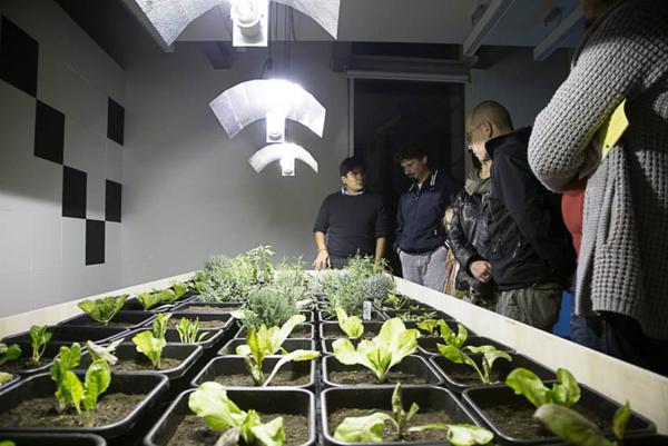 digital-garden3